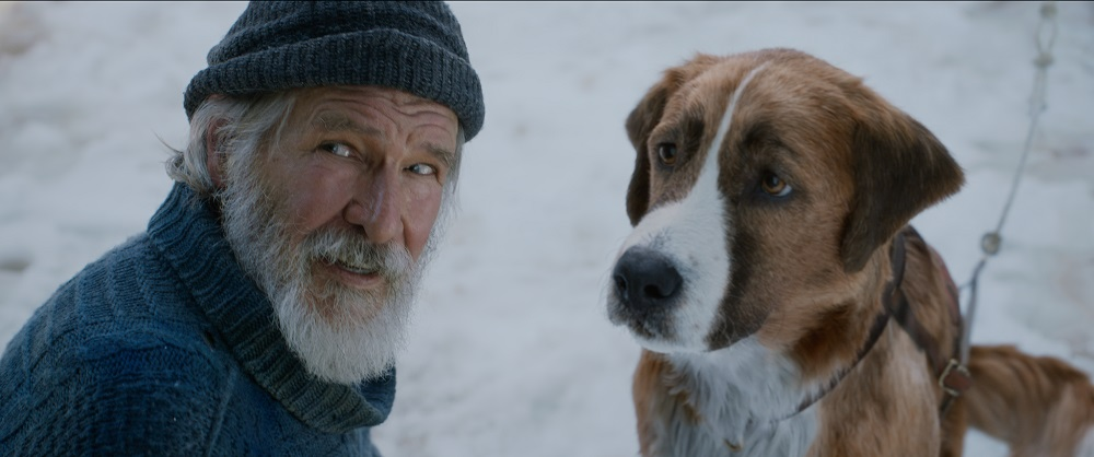 The Call of the Wild - Movie Review - The Austin Chronicle