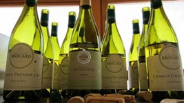 Chablis: The Thinking Person's Guide to Chardonnay