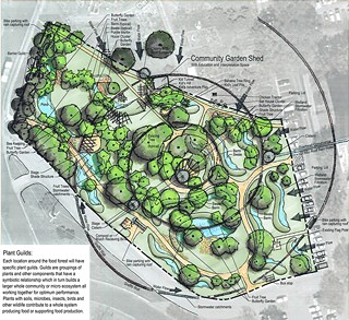 Landscape architect Mitchell Wright and permaculture designer Chris Sanchez created a conceptual plan for the proposed East Feast Festival Beach Food Forest.