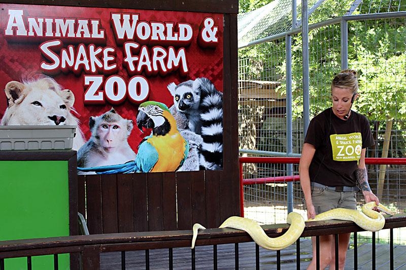 Day Trips Snake Farm New Braunfels Snake Farm Just Sounds Nasty But Is A Lot Of Fun Columns The Austin Chronicle