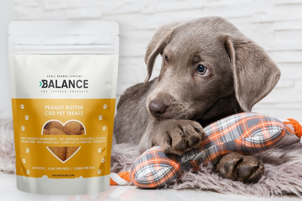 The Ultimate Guide on Using CBD for Pets: Here are the best CBD Dog Treats  to buy in 2020! - Chron Events - The Austin Chronicle