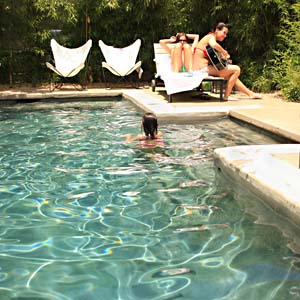 Hotel San Jose Best Hotel Motel Pool Best Of Austin 2008