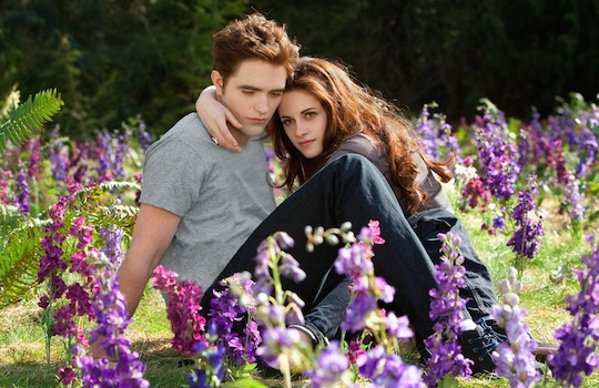 The Sun Sets on the 'Twilight' Saga