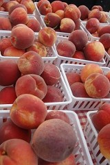 Farmers Market Report: May 25-26, 2013
