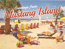 One in a Crowd: Mustang Island