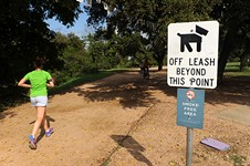 Parks Board Supports Shrinking Off-Leash Area
