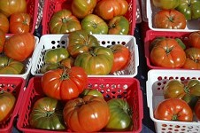 Farmers' Market Report: Jan 25-26, 2014