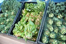 Farmers' Market Report: Feb 1-2, 2014