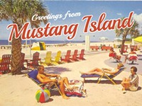 One in a Crowd: <i>Mustang Island</i>