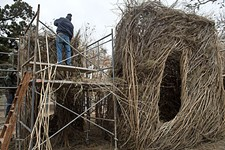 In Pease Park, Patrick Dougherty Constructs a Wooden Wonder