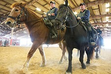 Inside Austin Police's Mounted Unit