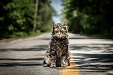 <i>Pet Sematary</i> Remake to Close SXSW Film