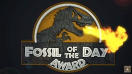 "COP25: A Three-Way Tie for ""Fossil of the Day"" Award at the UN Climate Change Conference"