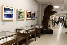 Day Trips: SHSU Natural Science and Art Research Center, Huntsville