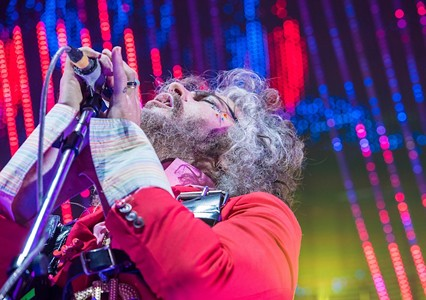 Hi, How Are You Day: Wayne Coyne