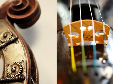 Specialty Instrument Store: Violins, Etc.
