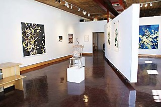 D Berman Gallery