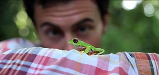 Sustainability Goes Viral! winner Follow the Frog
