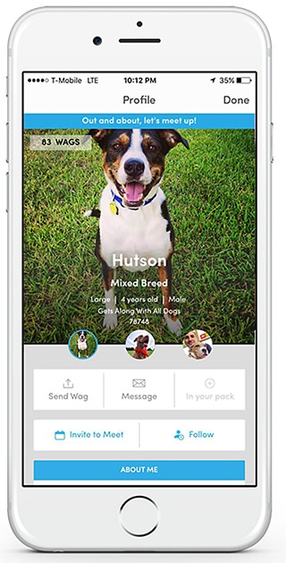 BarkHappy App Connects Pups for Playtime