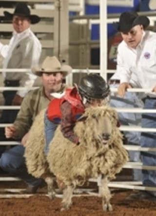 Luv Doc Recommends: Mutton Bustin' at Rodeo Austin