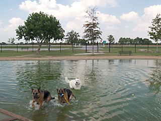 Day Trips The Millie Bush Bark Park On The West Side Of Houston Is