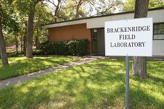 UT's Brackenridge Tract: For Love or Money?