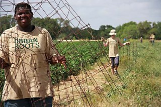 Chris Matthews carrying tomato cages with Farm Assistant Erin Bolton