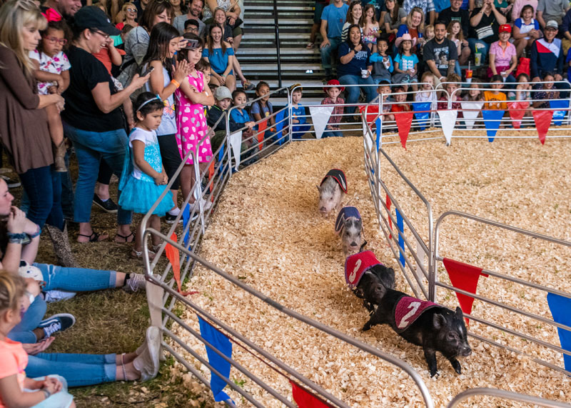 81st Annual Rodeo Austin At Travis County Expo Center 1