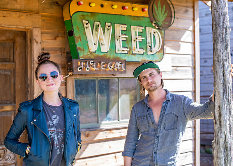 Planting the Seed: A Cannabis Conversation