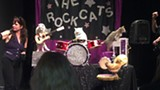 The Acro Cats Ambush Austin